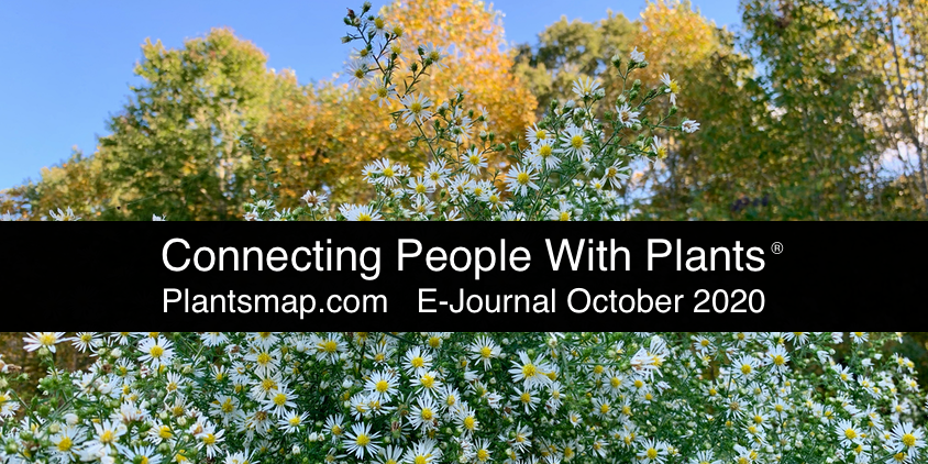 Plants Map Connecting People With Plants